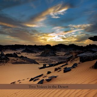 Two Voices In The Desert