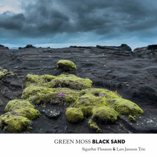 Green Moss Black Sand
