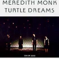 Turtle Dreams