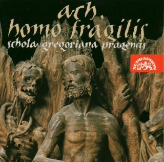 Ah Homo Fragilis (O Frailty Of
