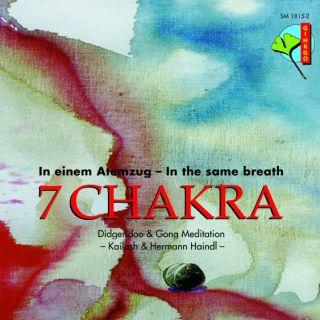 7 Chakra – Didgeridoo & Gong Meditation