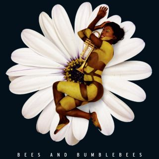 Bees and Bumblebees