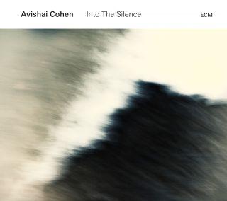 Into The Silence (vinyl)