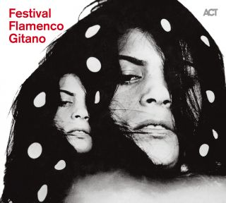 Festival Flamenco Gitano