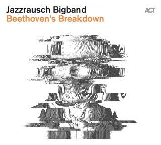 Beethoven`s Breakdown