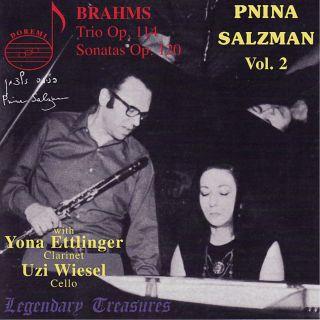 Salzman Vol.2/brahms